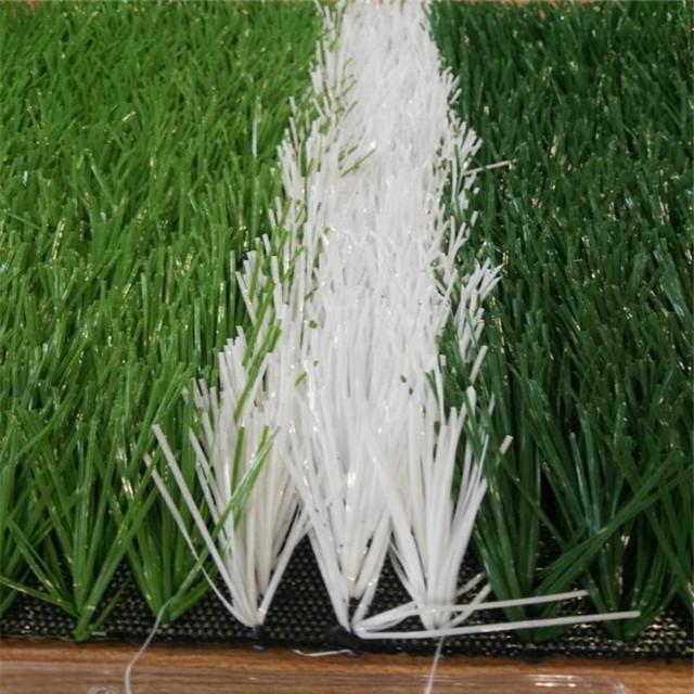 Artificial grass2